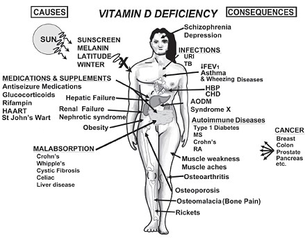 vitamin_d3.jpg